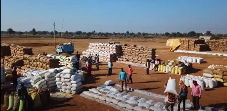 So far, 80.37 lakh metric tonnes of paddy has been purchased in